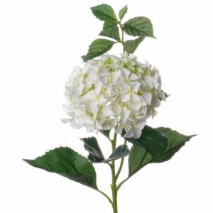 Hydrangea Faux White Luxury