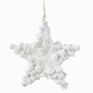 Natural Decoration Star White