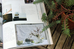 Brand Brilliance book and Sedum
