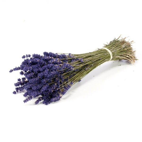 Dried Lavender bunches extra blue