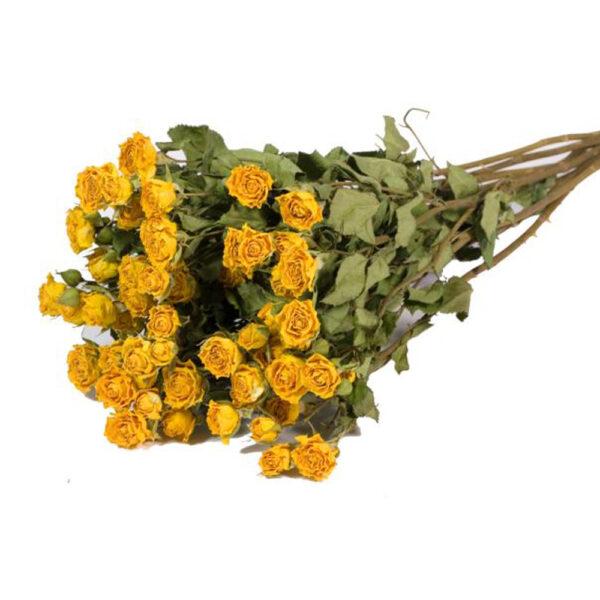 Spray Roses yellow