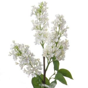 Lilac White Faux Stem 86cm