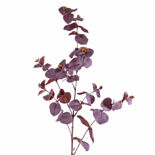 Eucalyptus dusky burgundy