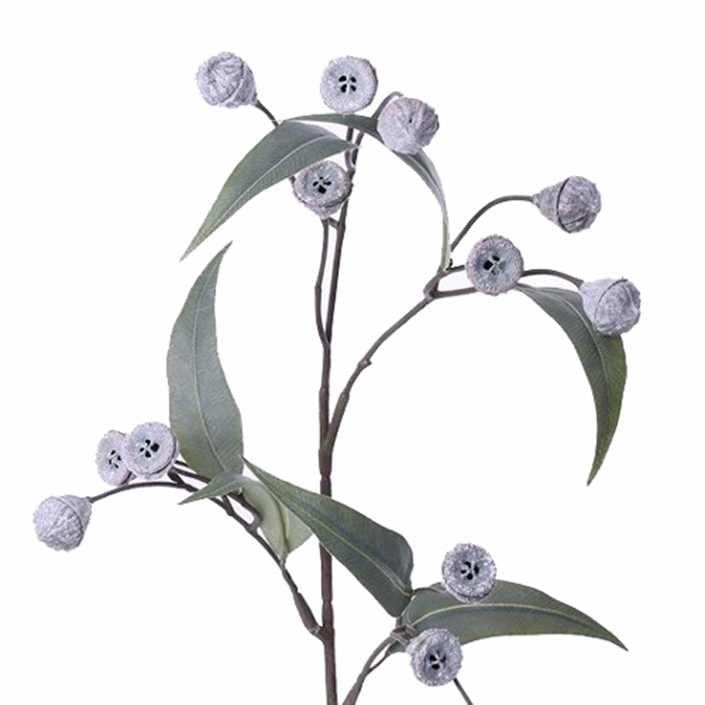 Eucalyptus pod spray stem
