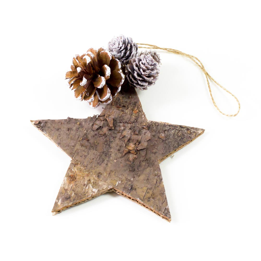 Star and Cone Decoration
