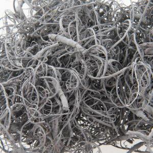 Curly Moss grey