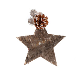 Star and cone decoration, medium