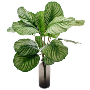Calathea orbifolia Faux, Natural Touch Leaves 76cm