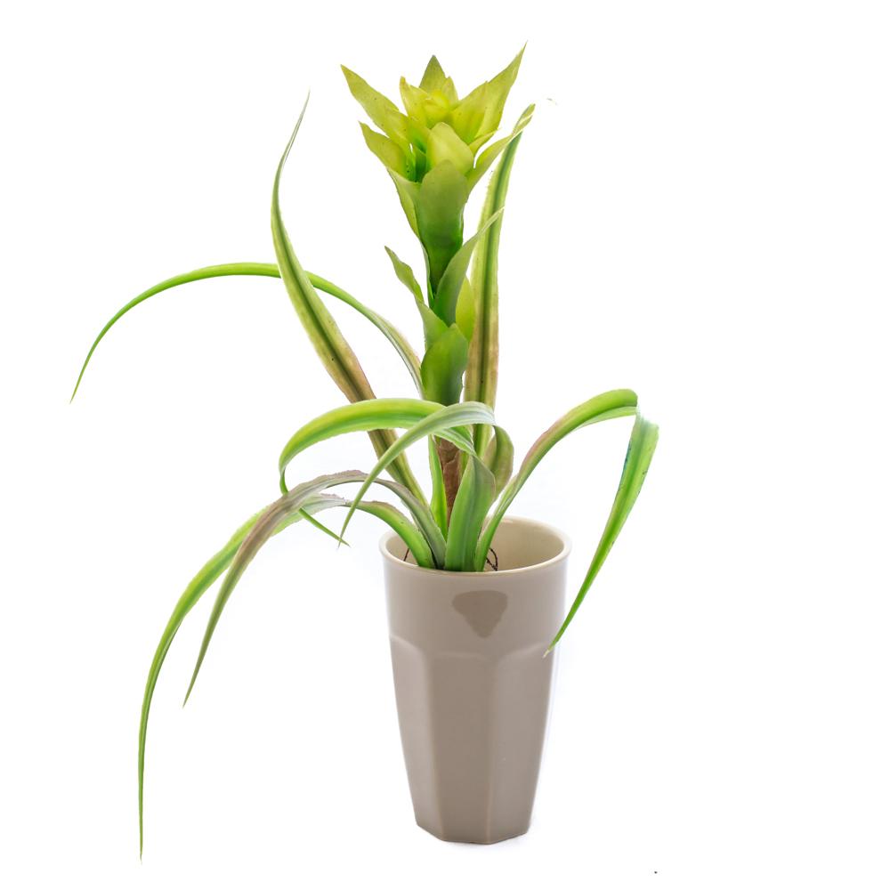 Green Guzmania Plant Faux, 41cm