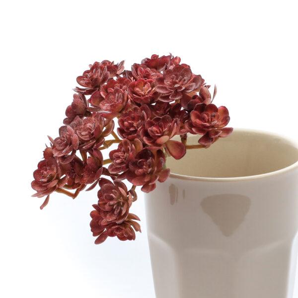 Echeveria Faux Mini Bush, Burgundy, 19cm Plant