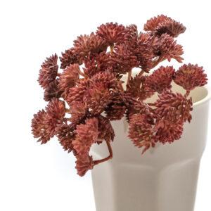 Sedum Faux Plant, Burgundy, 19cm