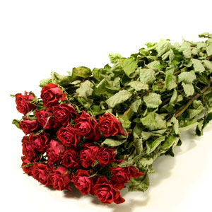 Dried Red Rose Bunch