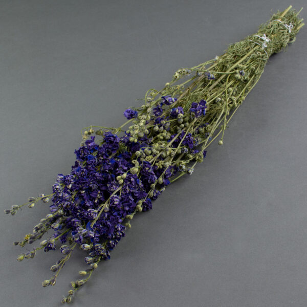 This image shows a bunch of dried, blue delphiniums, laid on a grey background