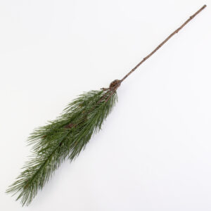 This image shows a single 124cm long pine spray with cones, against a white background