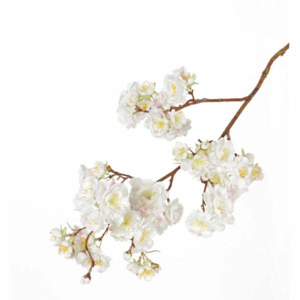 Faux Prunus Serrulata, Cream