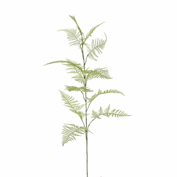 Faux Asparagus Bella, Large