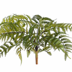 Artificial Anthyrium Fern