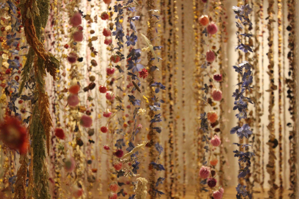 Rebecca Louise Law Dried Flowers
