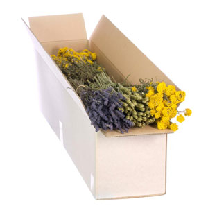 Dried Flowers Mixed Box Blue and Yellow