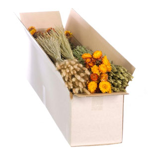 Dried Flowers Mixed Box Orange