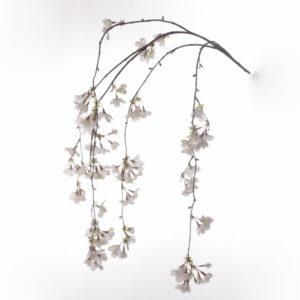 Cherry Blossom, Cream, 120cm
