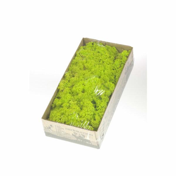 Reindeer Moss, Green
