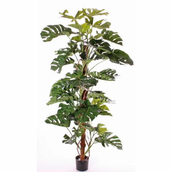 Artificial Monstera Plant 190cm Tall