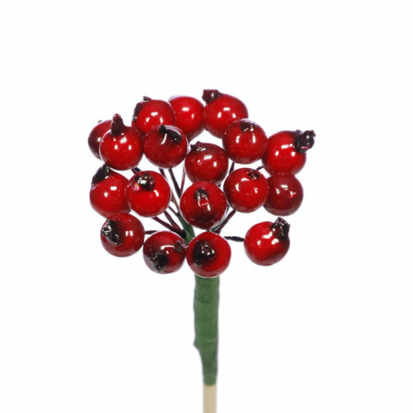 Dried Berry Cluster, Red