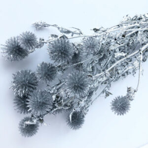 Dried Echinops, Silver, Silver Glitter