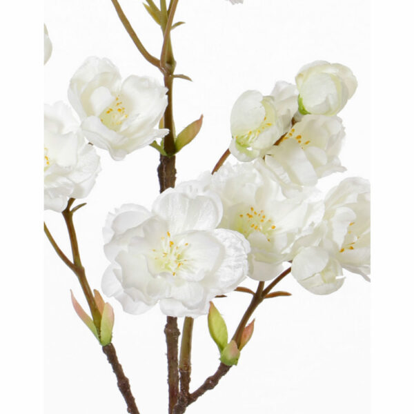 Artificial Prunus Serrulata, Cream