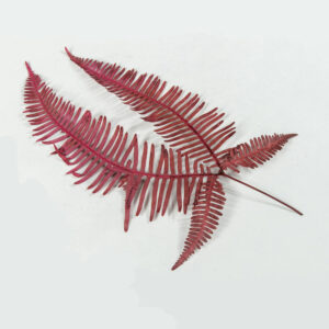 Preserved Fern (Double), red