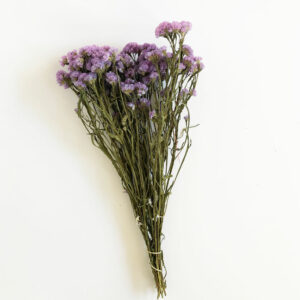 Dried Statice, sinuata, Light Lilac