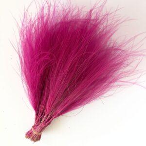 Pink Trolls Hair Dried Stipa Pennata,
