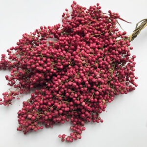 Pepperberry, Pink (Schinus molle)