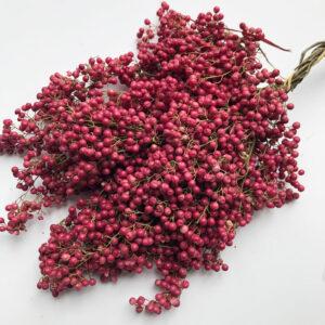 Pepperberry, Pink (Schinus molle)