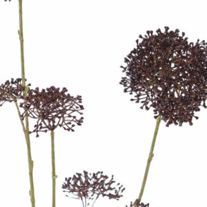 Faux Skimmia, Brown