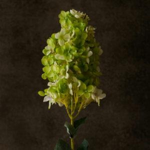 Faux Hydrangea paniculata, green