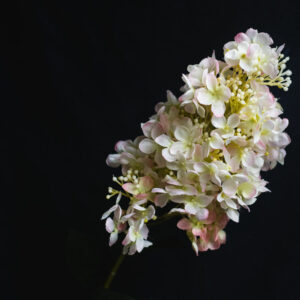 Faux Hydrangea paniculata, white, pink