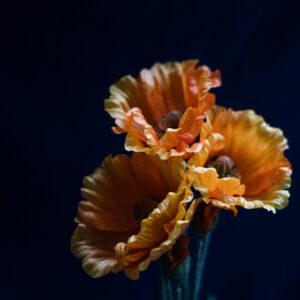 Faux Papaver, (Poppy) Orange