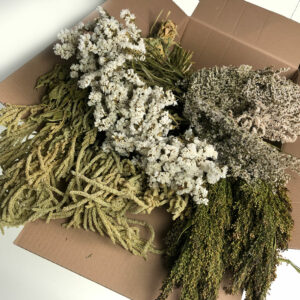 Florist Mixed Dried Box Flowers, White Statice