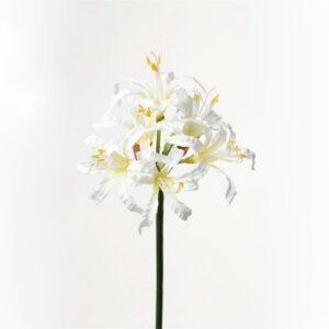 Faux Nerine, White