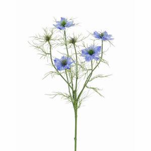 Nigella spray, blue