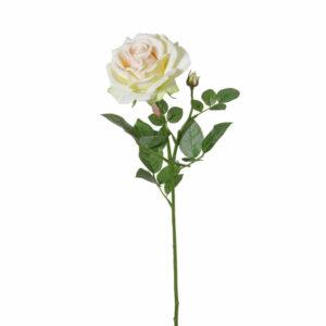 Faux Rose, Fleurie, lemon