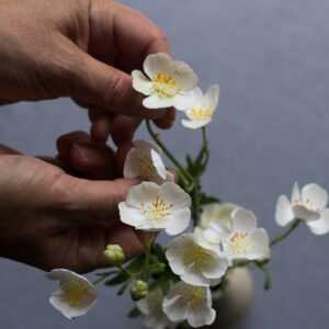 Faux Meadow Buttercup, White