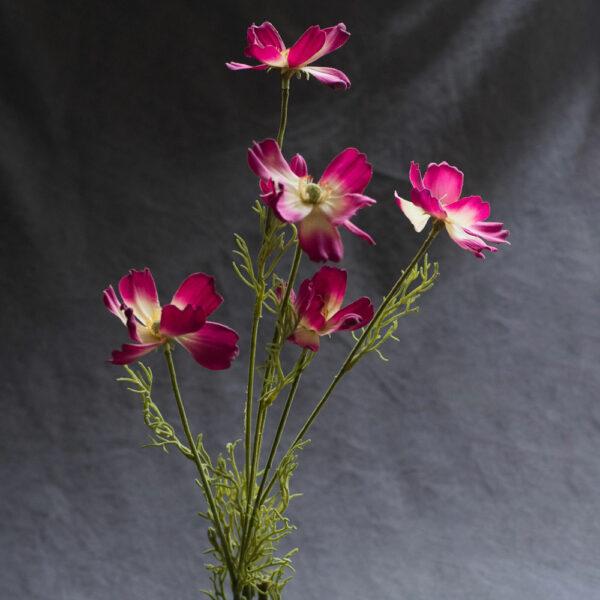 Faux Cosmos Sensation, Cerise Pink