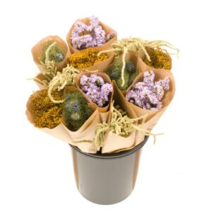 Dried Flower Straight Line Bunches, Mix 9