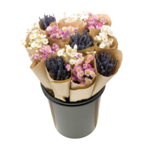 Dried Flower Straight Line Bunches, Mix 11