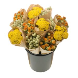 Dried Flower Straight Line Bunches, Mix 13