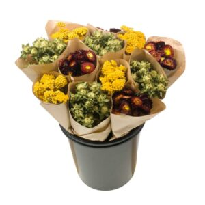 Dried Flower Straight Line Bunches, Mix 14