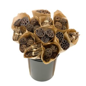 Dried Flower Straight Line Bunches, Mix 15